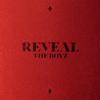 THE BOYZ - THE BOYZ 1ST ALBUM [REVEAL]  artwork