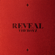 THE BOYZ - THE BOYZ 1ST ALBUM [REVEAL]