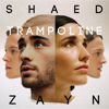 SHAED & ZAYN - Trampoline artwork