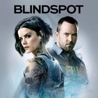 Télécharger Blindspot, Saison 4 (VF) Episode 21