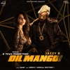 Dil Mangdi Remix feat Apache Indian Various Artists Single