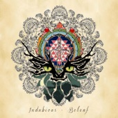 Indubious - Do the Best You Can