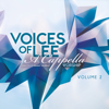 A Cappella Worship, Vol. 2 - Voices of Lee