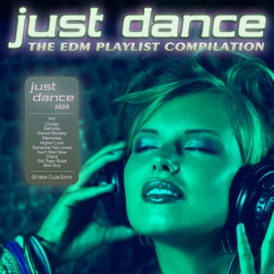fake2real - Dance Monkey ( Playlist Remix)