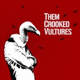 """The album art for """"Them Crooked Vultures"""" by Them Crooked Vultures"""