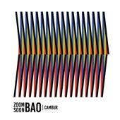 Zoom Soon Bao - La Ceiba