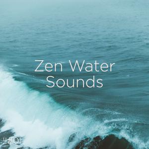 Ocean Sounds & Ocean Waves For Sleep - !!#01 Zen Water Sounds
