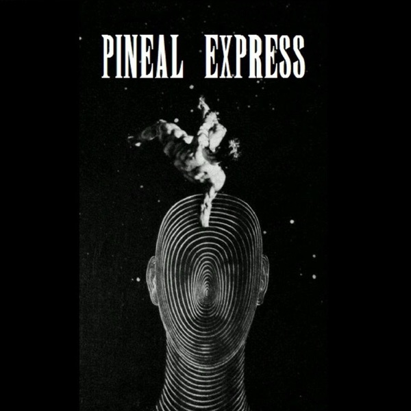 Episode 23 - Natalie Wynn on Contrapoints – Pineal Express – Podcast