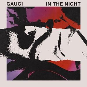In the Night - Single