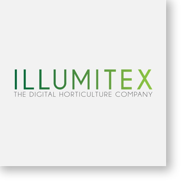 Lighting Up with Illumitex