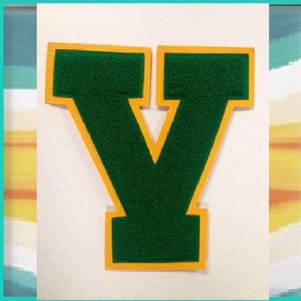 Vestal Golden Bears High School Principal's Podcast