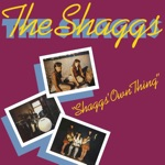The Shaggs - You're Somethin' Special To Me