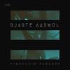 Pinocchio Paradox - Bjarte Aasmul