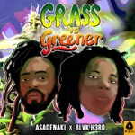 Asadenaki & Blvk H3ro - Grass Is Greener