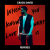 Craig David - When You Know What Love Is (Majestic Remix) artwork