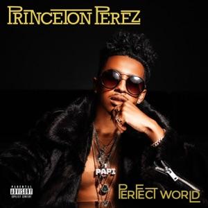 Perfect World - Single - Princeton Perez