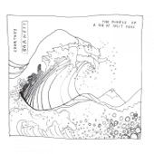 Courtney Barnett - Out of the Woodwork