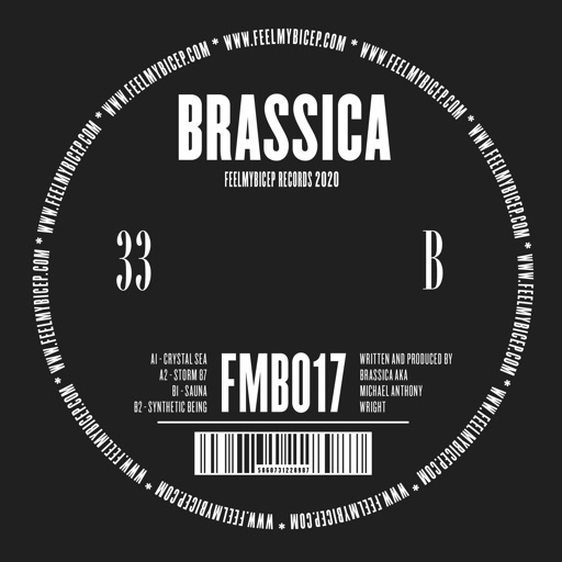 Crystal Sea - EP by Brassica
