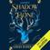 Leigh Bardugo - Shadow and Bone (Unabridged)