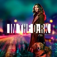 Télécharger In the Dark, Season 1 Episode 13