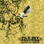 Fly My Pretties - Bag of Money