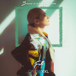 Feli - Banii N-Aduc Fericirea feat. Grasu XXL