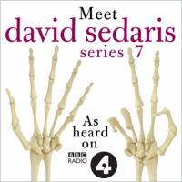 David Sedaris - Meet David Sedaris: Series Seven artwork