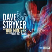 Bob Mintzer;WDR Big Band;Dave Stryker - When Doves Cry (feat. Bob Mintzer & WDR Big Band)