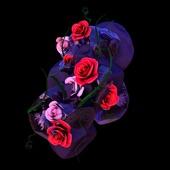 Hyroglifics - Stone Rose