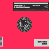 Thing for You (Don Diablo Remix) - David Guetta & Martin Solveig