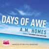 A.M. Homes - Days of Awe artwork