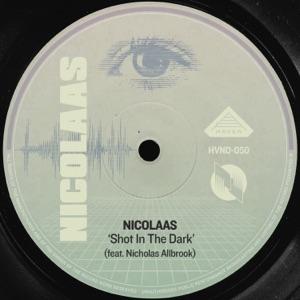 Shot in the Dark (feat. Nicholas Allbrook) - Single
