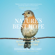 Douglas W. Tallamy - Nature's Best Hope: A New Approach to Conservation that Starts in Your Yard