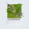 Vũ Cát Tường - Ngày Mai artwork