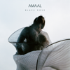 Amaal - So What artwork