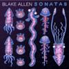 Blake Allen, Christopher Koelzer, Emily Uematsu & Susan Mandel - Sonatas  artwork