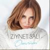 Sali Ziynet - Ömrüm artwork