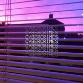 Sidewalks and Skeletons - Cybercrimes