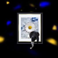 長澤知之 - 世界は変わる artwork