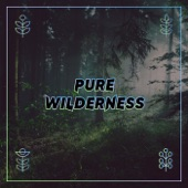 Eliot Lipp - Pure Wilderness