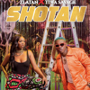 Shotan - Zlatan & Tiwa Savage