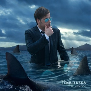 Toke D Keda - Lamento Boliviano - Line Dance Music