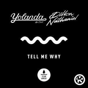 Yolanda Be Cool & Dillon Nathaniel - Tell Me Why