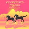 Joe Crepúsculo & Tomasito - No sé si es amor bild