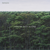 You're Not Alone - Semisonic