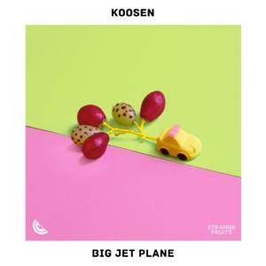 Big Jet Plane - Single