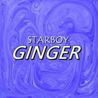 Starboy - Ginger (feat. L.A.X & Wizkid) - Single