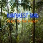 Rainforest Band - Caribbean Sunset