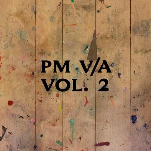 PM V/A Vol. 2 by Various Artists