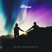 We Are the Universe - Ilan Bluestone - Ilan Bluestone